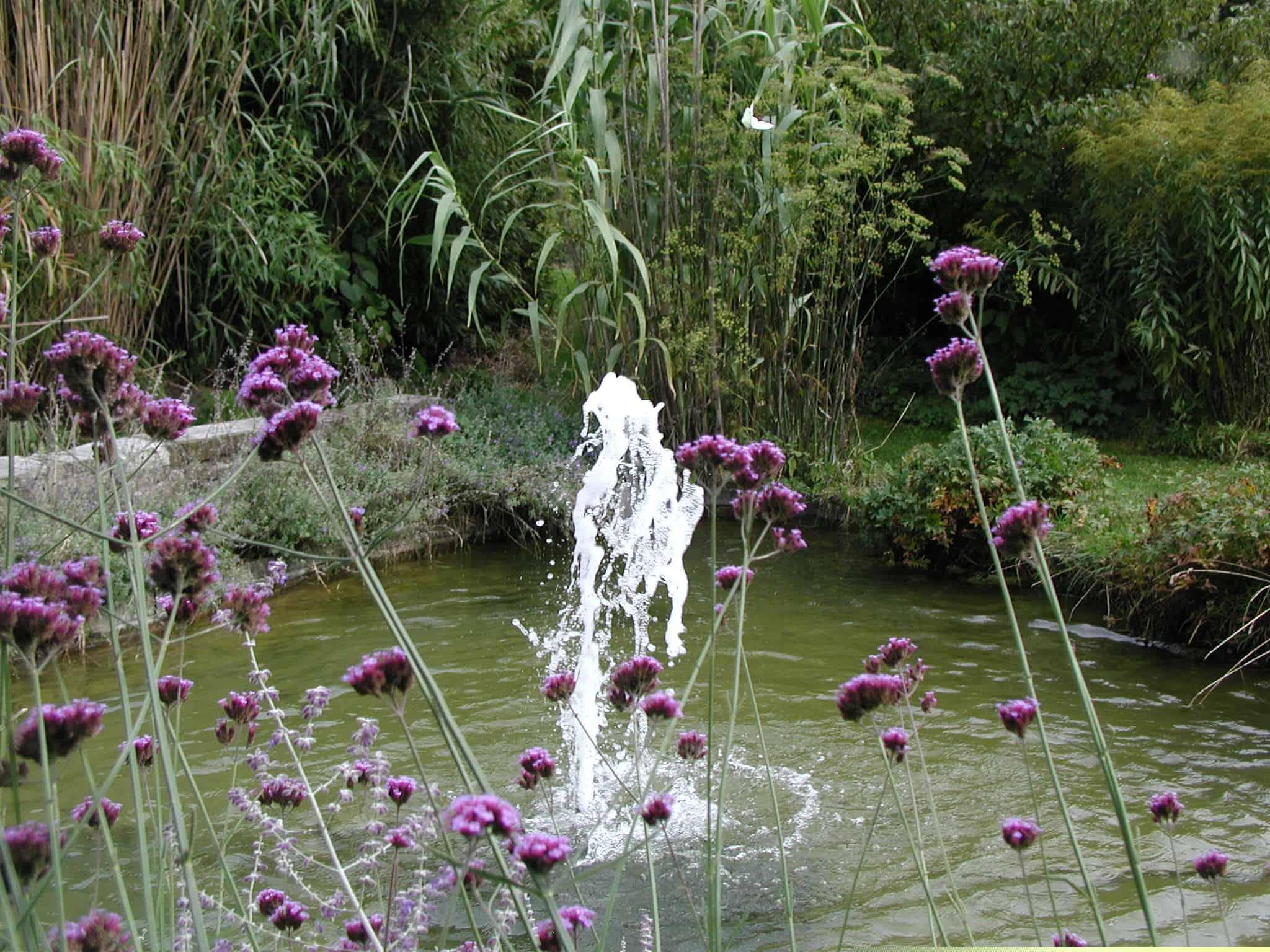 étang jet d'eau plantation paysagiste