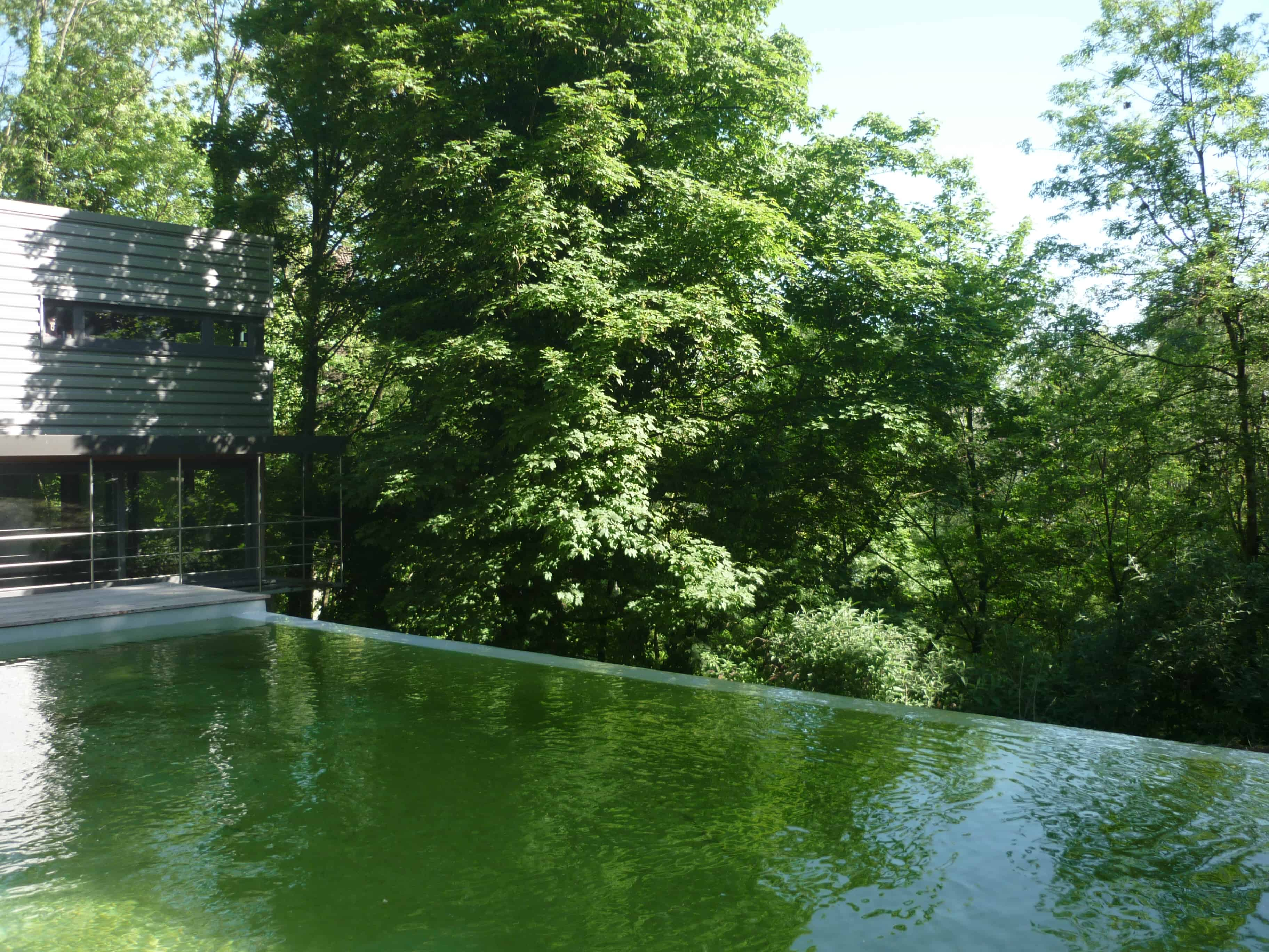 étang piscine naturel débordement