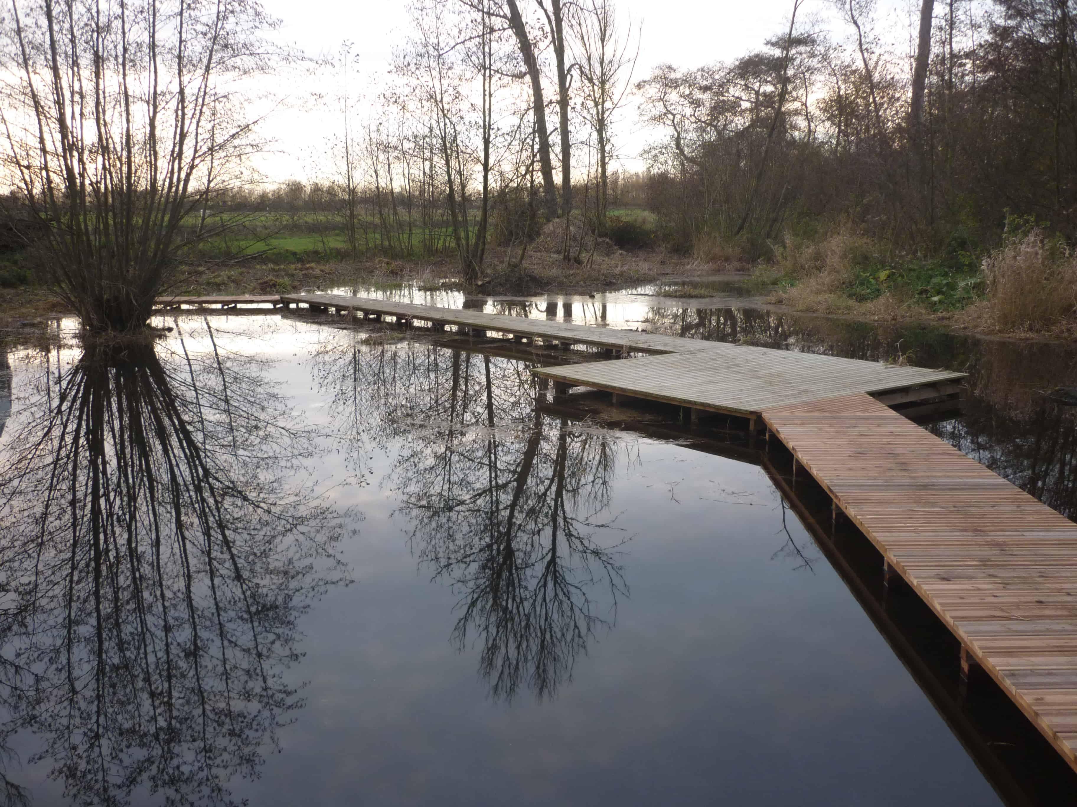 ponton bois Pin, Acacia, Ipe, Jatoba, Massaranduba, Cumaru eau etang