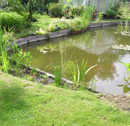 Kain bassin étang plantes naturel bois planches pompes filtres